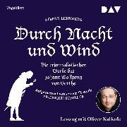 Cover-Bild zu Durch Nacht und Wind (Audio Download) von Lehnberg, Stefan