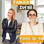 Cover-Bild zu Folge 36-40 (Audio Download) von Zufall, Familie