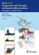 Cover-Bild zu Diagnostik und Therapie bei Bandscheibenschäden von Brötz, Doris