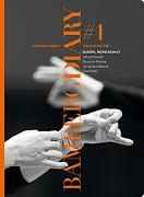 Cover-Bild zu BAMBERG DIARY #1 von Noltze, Holger (Hrsg.)