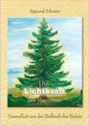 Cover-Bild zu Die Lichtkraft des Baumes von Schuster, Sigmund