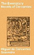 Cover-Bild zu Saavedra, Miguel de Cervantes: The Exemplary Novels of Cervantes (eBook)