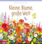 Cover-Bild zu van Genechten, Guido: Kleine Blume, große Welt