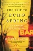Cover-Bild zu The Trip to Echo Spring von Laing, Olivia