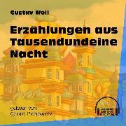 Cover-Bild zu Weil, Gustav: Erzählungen aus Tausendundeine Nacht (Ungekürzt) (Audio Download)