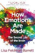 Cover-Bild zu Barrett, Lisa Feldman: How Emotions Are Made (eBook)