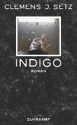 Cover-Bild zu Setz, Clemens J.: Indigo