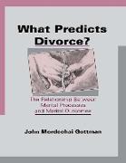 Cover-Bild zu Gottman, John Mordechai: What Predicts Divorce? (eBook)