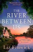 Cover-Bild zu Fenwick, Liz: River Between Us (eBook)