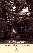 Cover-Bild zu Zweig, Stefan: Brennendes Geheimnis