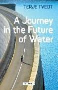 Cover-Bild zu Tvedt, Terje: A Journey in the Future of Water