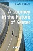 Cover-Bild zu Tvedt, Terje (University of Bergen, Norway): A Journey in the Future of Water