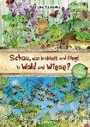 Cover-Bild zu Bajerowicz, Katarzyna: Schau, was krabbelt und fliegt in Wald und Wiese?