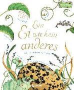 Cover-Bild zu Aston, Dianna Hutts: Ein Ei wie kein anderes