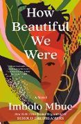 Cover-Bild zu Mbue, Imbolo: How Beautiful We Were (eBook)