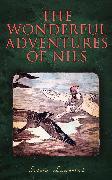 Cover-Bild zu Lagerlöf, Selma: The Wonderful Adventures of Nils (eBook)
