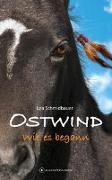 Cover-Bild zu OSTWIND - Wie es begann von Schmidbauer, Lea