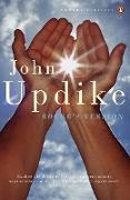 Cover-Bild zu Updike, John: Roger's Version