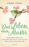 Cover-Bild zu Iding, Doris: Das Leben, mein Meister