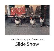 Cover-Bild zu Slide Show von Levitt, Helen