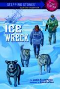 Cover-Bild zu Ice Wreck von Penner, Lucille Recht