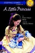 Cover-Bild zu A Little Princess von Dubowski, Cathy East