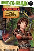 Cover-Bild zu How to Track a Dragon von David, Erica (Bearb.)