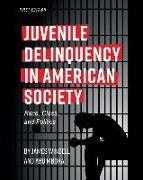 Cover-Bild zu Windell, James, MA: JUVENILE DELINQUENCY IN AMERICAN SOCIETY