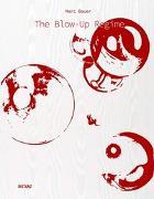 Cover-Bild zu Bauer, Marc: The Blow-Up Regime