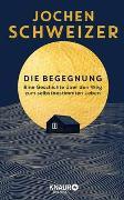 Cover-Bild zu Schweizer, Jochen: Die Begegnung. Eine Geschichte über den Weg zum selbstbestimmten Leben