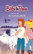Cover-Bild zu Bibi & Tina im Land der weißen Pferde von Gürtler, Stephan