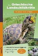 Cover-Bild zu Kosin, Ines: Die Griechische Landschildkröte