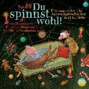 Cover-Bild zu Du spinnst wohl! (Audio Download) von Pannen, Kai