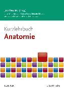 Cover-Bild zu Kurzlehrbuch Anatomie von Koch, Marco
