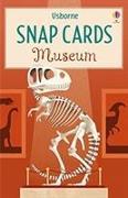 Cover-Bild zu Oldham, Matthew: Museum Snap