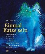 Cover-Bild zu Einmal Katze sein von van Hout, Mies
