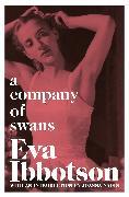 Cover-Bild zu Ibbotson, Eva: A Company of Swans