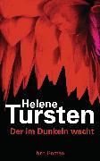 Cover-Bild zu Der im Dunkeln wacht (eBook) von Tursten, Helene