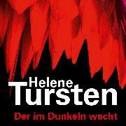 Cover-Bild zu Der im Dunkeln wacht (Audio Download) von Tursten, Helene