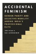 Cover-Bild zu Accidental Feminism (eBook) von Ballakrishnen, Swethaa S.