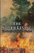 Cover-Bild zu The Silver Lining (eBook) von Reice, Seth R.