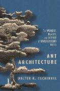 Cover-Bild zu Ant Architecture (eBook) von Tschinkel, Walter R.