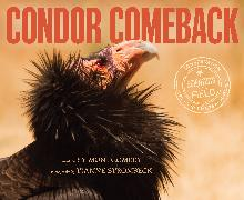 Cover-Bild zu Condor Comeback von Montgomery, Sy