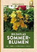 Cover-Bild zu Kawollek, Wolfgang: Bildatlas Sommerblumen (eBook)