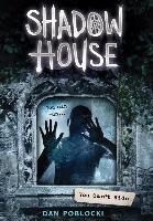 Cover-Bild zu You Can't Hide (Shadow House, Book 2), Volume 2 von Poblocki, Dan