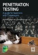 Cover-Bild zu Furneaux, Nick: Penetration Testing