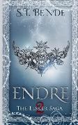 Cover-Bild zu Bende, S. T.: Endre