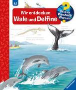 Cover-Bild zu Wieso? Weshalb? Warum? Wir entdecken Wale und Delfine (Band 41) von Rübel, Doris