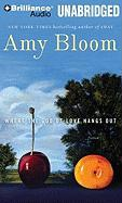 Cover-Bild zu Bloom, Amy: Where the God of Love Hangs Out