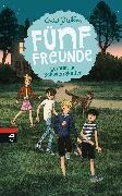 Cover-Bild zu Blyton, Enid: Fünf Freunde geraten in Schwierigkeiten (eBook)